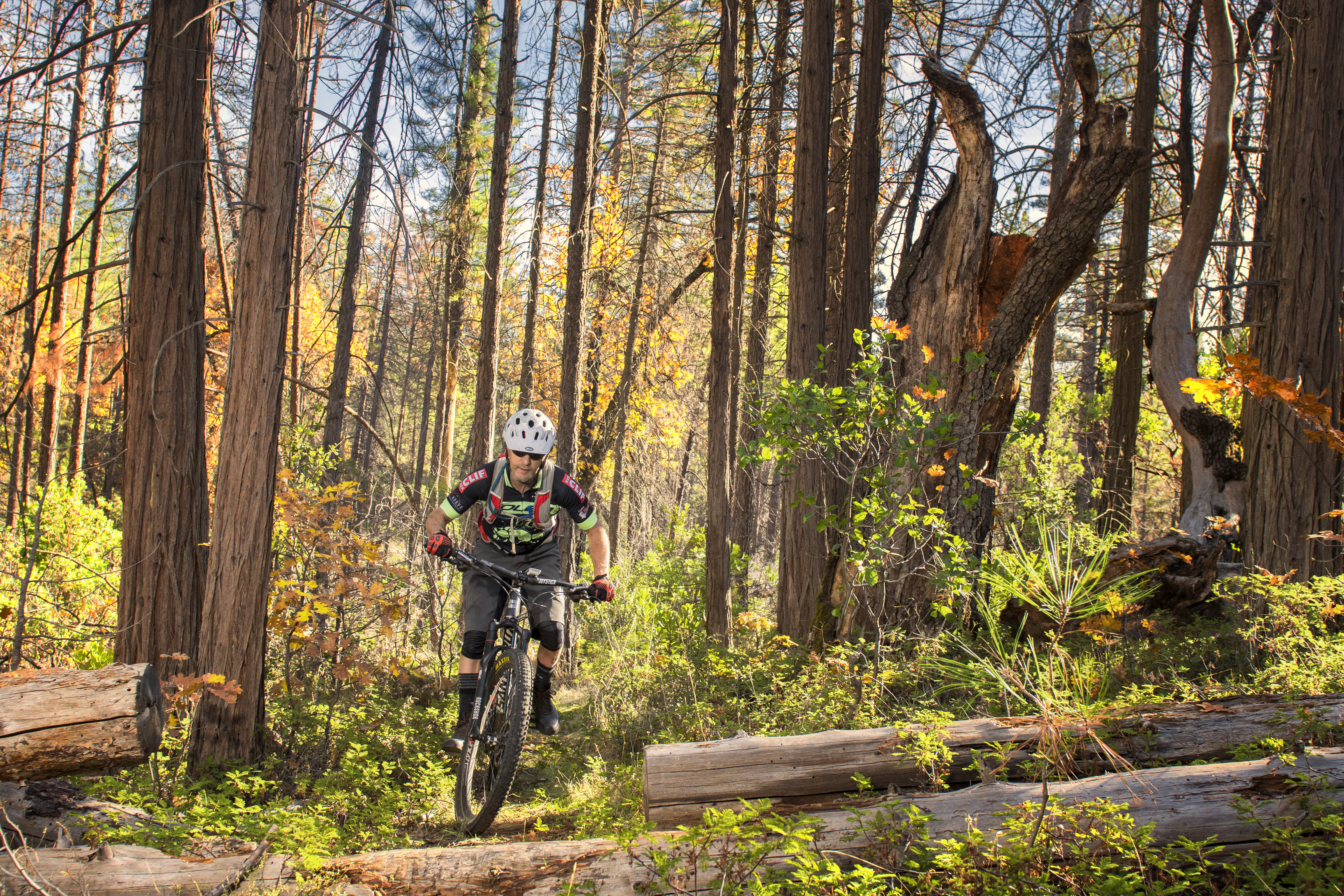 Mountain Biker in Groveland