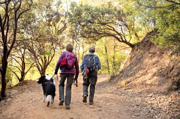 Hiking Dragoon Gulch with a dog