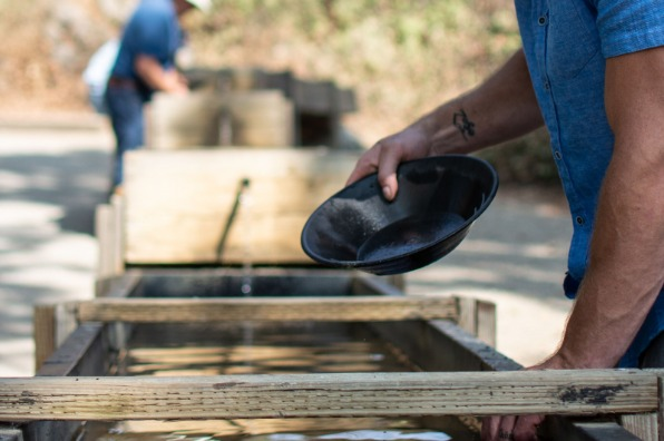 Gold Panning in Columbia State Historic Park