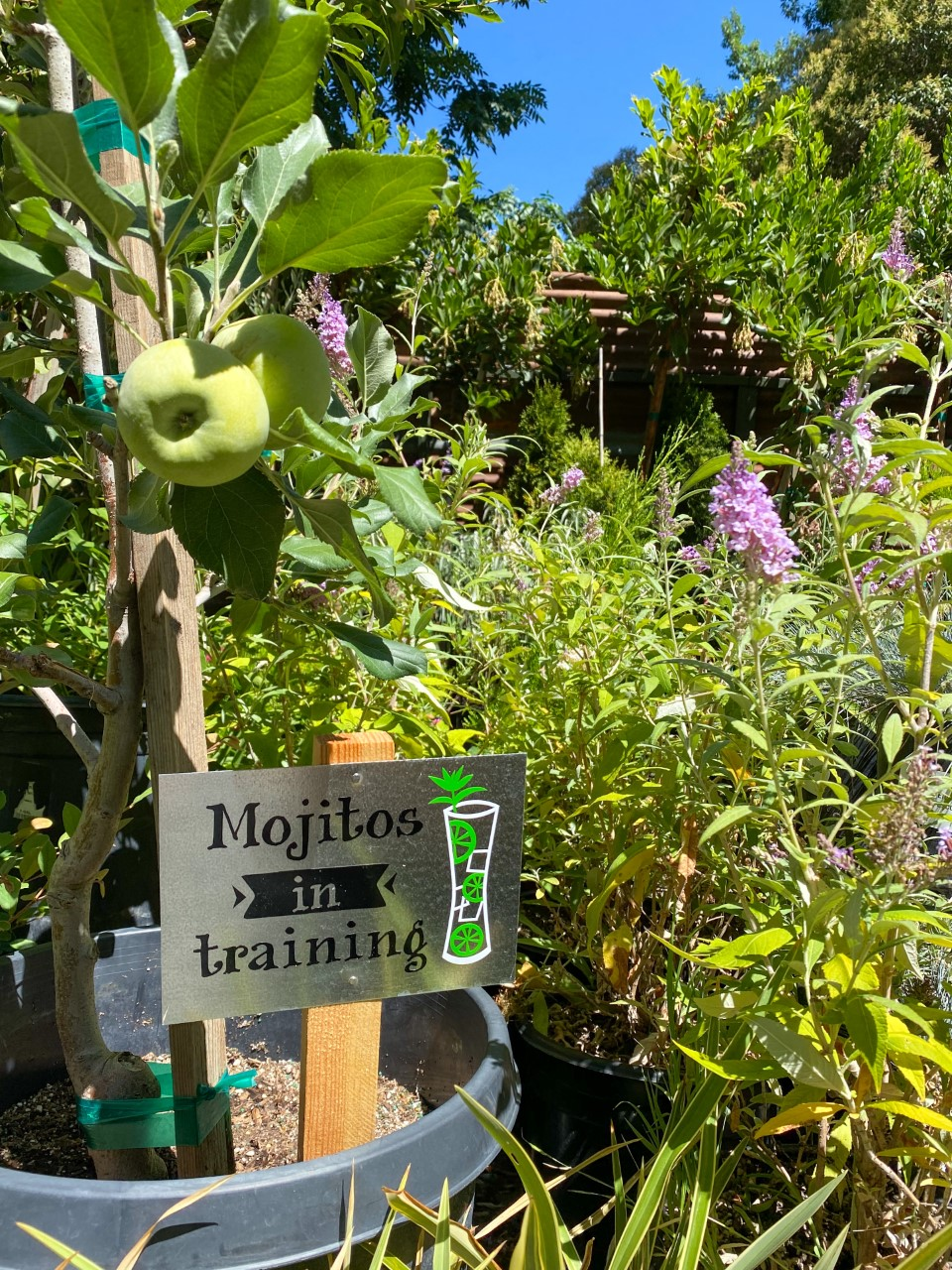 Joyful Heart Gardens Sign