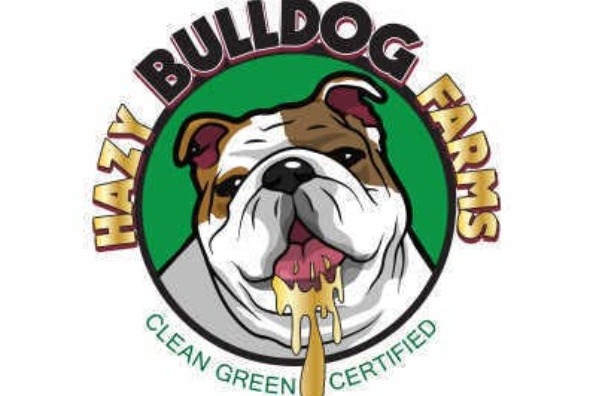 Hazy Bulldog Farms