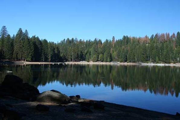 Pinecrest Campground