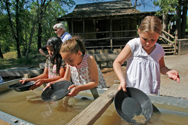 Gold Panning in Jamestown Gold Country