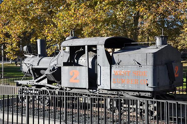 Tuolumne Park West Side Lumber Co Train
