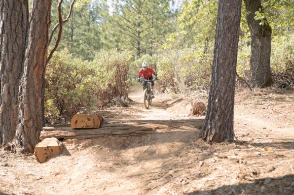Ferretti Road Trail Network