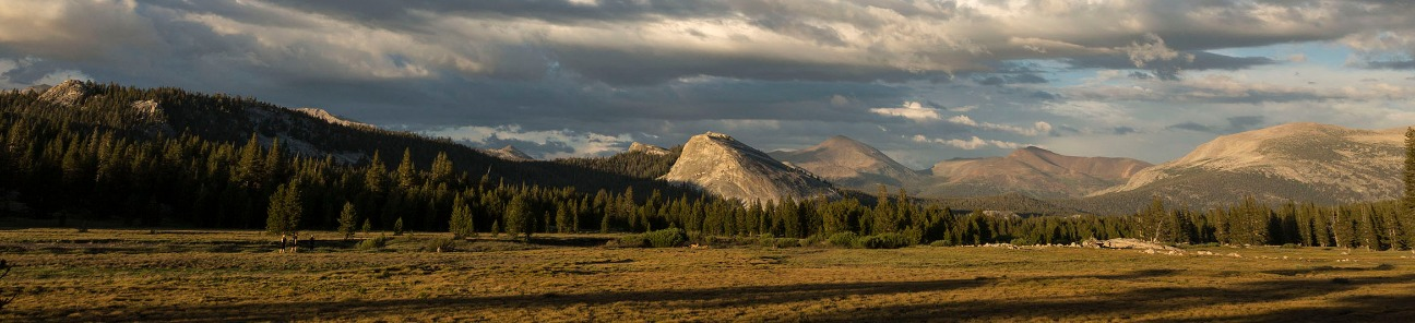Tuolumne Meadows-Tracy Barbutes